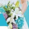 Свадебные секреты от Светланы Счастливой