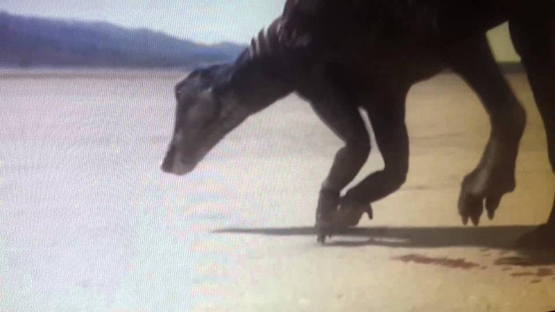 BBC часть 2 Планета динозавров. Затерянный мир