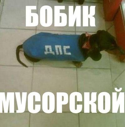Дима Мельников