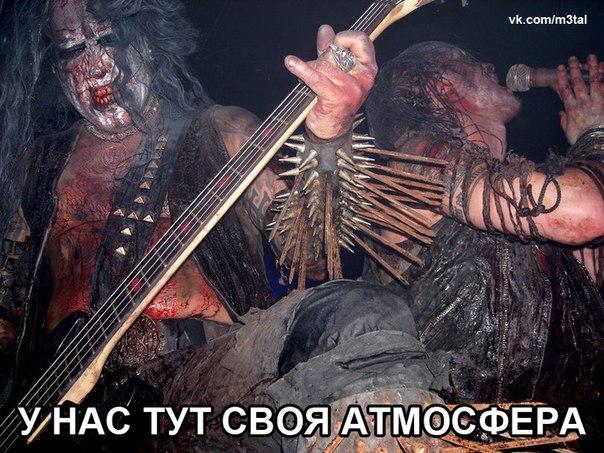 http://cs315731.vk.me/v315731668/3dd5/kwf5NwtIQCo.jpg