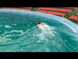 Плавание с дельфинами♥️?