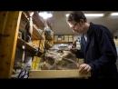 Сибиротитан так томские ученые назвали новый вид динозавра в честь Сибири