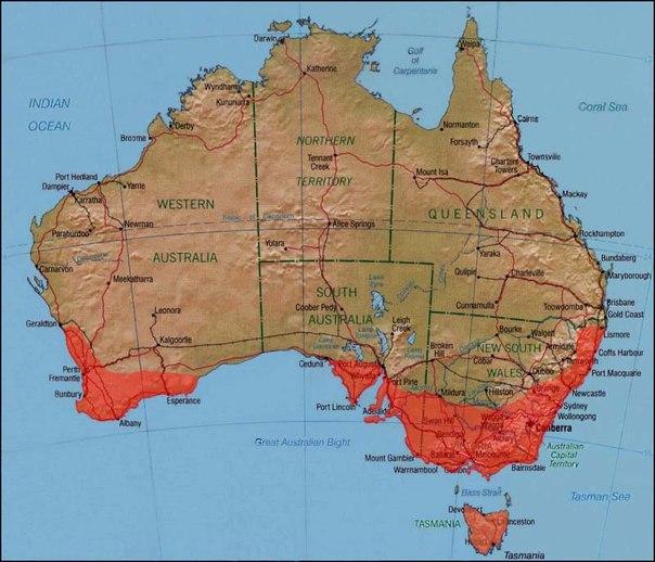 Ареал обитания: вдоль юго-восточного побережья Австралии, от Нового Южного Уэльса и Виктории до Тасмании и дальнего угла Южной Австралии