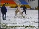 Каплан Дагестан vs белый Арлан Казакстан......чемпионат СНГ 2001 г.