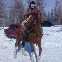 Анкета Николай Степаненко