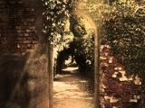 L Art Mystique - Le Jardine Secret