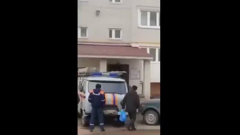 Женщина в Башкирии отогнала лося метким броском кота😂😂😂