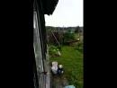 дождик на даче