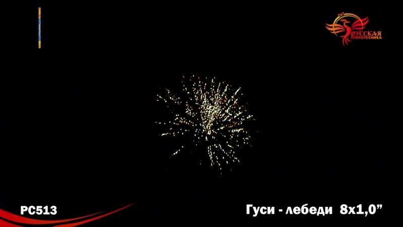 PC 513 ГУСИ-ЛЕБЕДИ-8