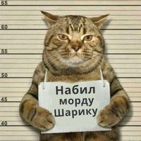 Анкета Илья Сидоров