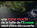 Environnement Une zone morte aussi grande que l'Écosse découverte dans l'océan
