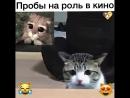 Кот в сапогах - пробы актеров!