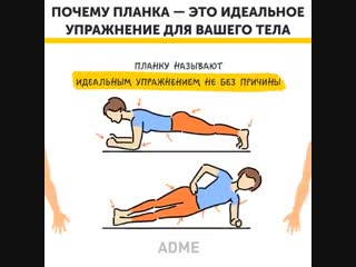 планка — это идеальное упражнение для вашего тела