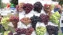 Республиканская выставка ярмарка Янтарная гроздь винограда 2018 прошла в Пинске
