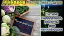 Сыроедение меню для начинающих простые рецепты сыроедов зелёный майонез хлебци салаты