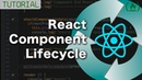 React Component Lifecycle - Hooks / Methods Explained