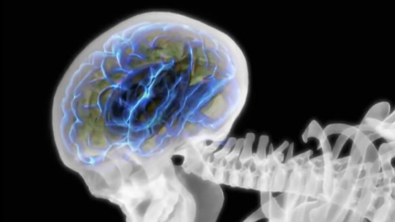 Операторы сознания- сущности паразиты (2013)