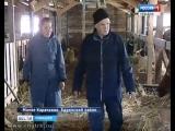 В Чувашии стартует приём документов на гранты для начинающих фермеров