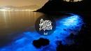 Nils Andreas Bioluminescence Original Mix