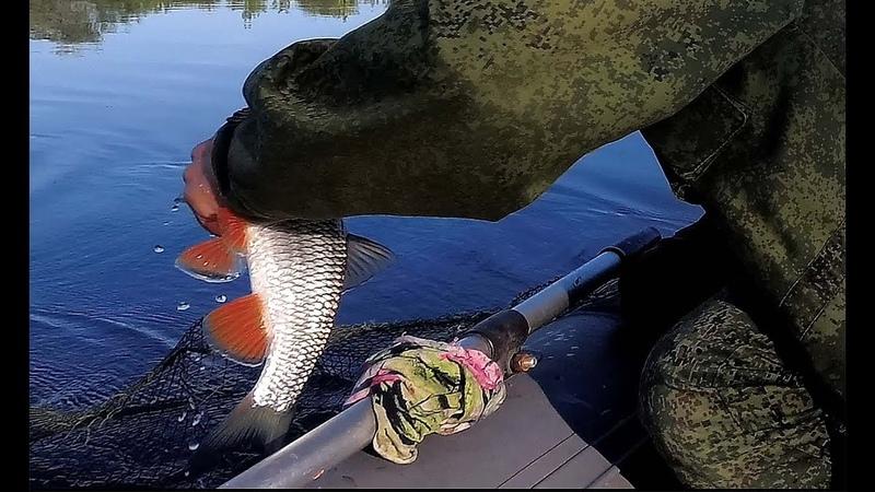 Рыбалка на Оке Рыбацкое счастье Ловля на поплавок