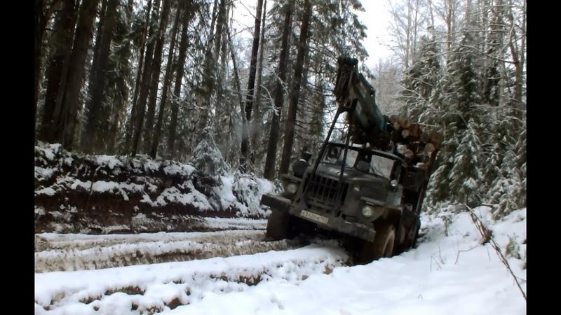 Покатушки за лесом на Урале лесовозе Чем дальше тем страшней