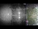 Day 11 VIDEO x16 Ant wars Муравьиная ферма ResOfAnts Муравьи Camponotus Diacamma Ants