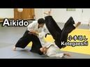 Dynamic and Sharp Aikido KOTEGAESHI in Greece SHIRAKAWA RYUJI shihan
