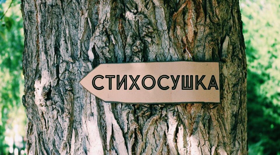 Афиша Новосибирск СТИХОСУШКА 27/07/ Первомайский сквер