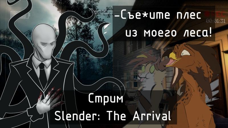 Slender Terons Jonsy КАМЕРА Общаемся с Вами
