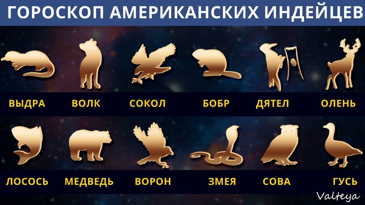 зодиак - Гороскоп американских индейцев. Тотемные животные по Знаку Зодиака. Астрология. MmYPSGzDuk0