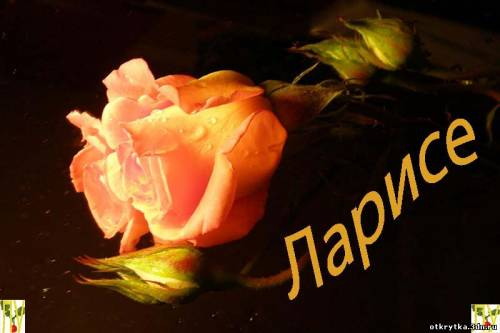 Поздравляем С Днем Рождения Ларису Борисовну!   Y7T_y2vDd3w