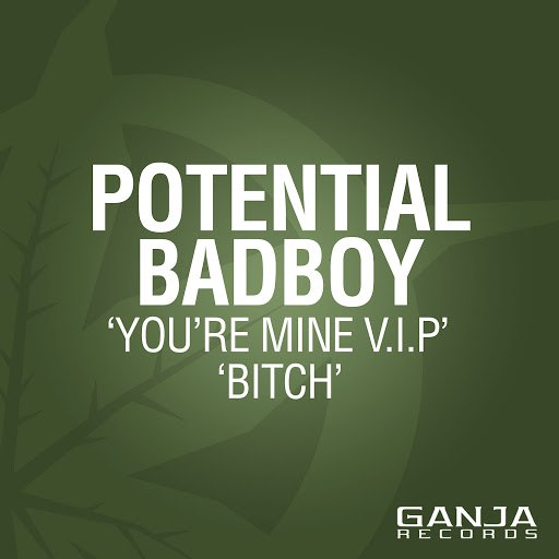 POTENTIAL BADBOY альбом You're Mine (VIP) / Bitch