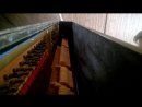 Cheek to cheek Speak Softly Love Николай Давыдов Under the Piano Lid №1