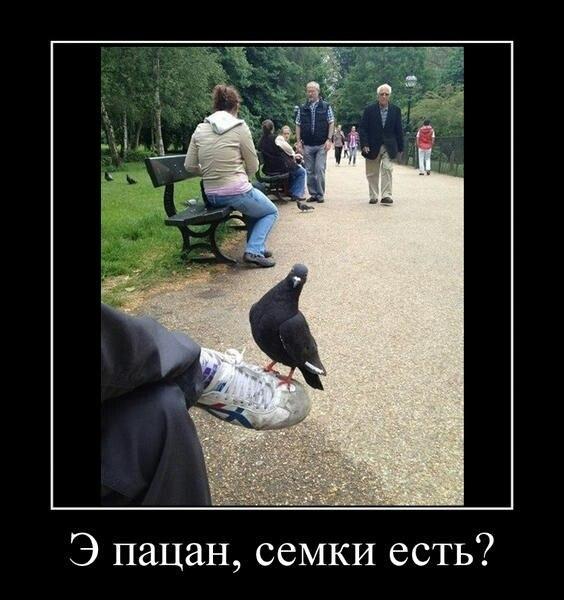 http://cs315223.vk.me/v315223067/8d7a/3Wo02b5yyxE.jpg