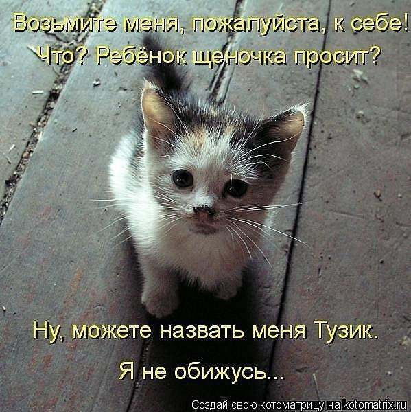 http://cs312819.vk.me/v312819335/6fc4/OeTqDtcaUjc.jpg