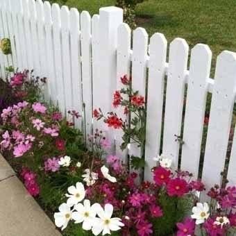 Оформляем красиво заборы цветами