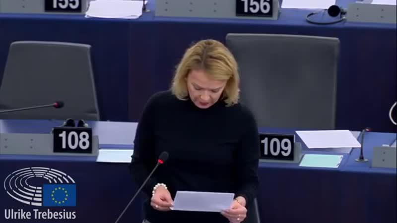 Plenaraussprache über den Einfluss ausländischer Akteure auf die anstehende Wahlkampagne des EP