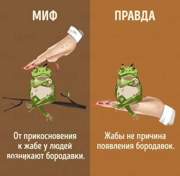 https://pp.vk.me/c615830/v615830306/16406/4R2lhQmMhxA.jpg