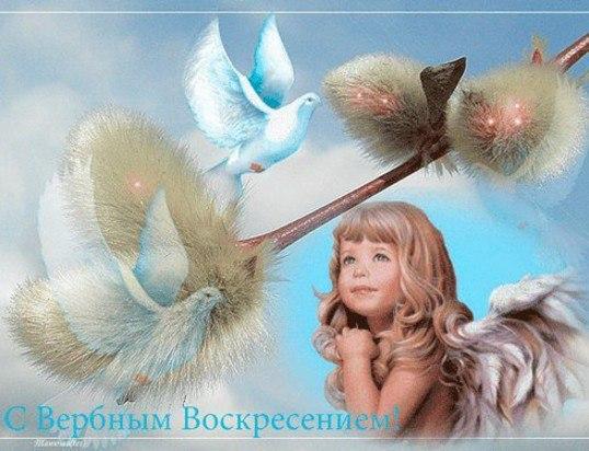 http://cs416923.vk.me/v416923446/4e45/Wfed_KCUlfc.jpg