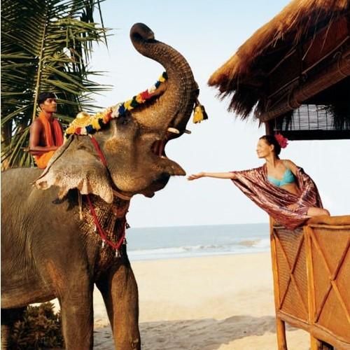 Туры в Гоа на 12 ночей от 25800 c человека в октябре