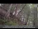 Геноцид Славяно-Ариев, путём жидопрограммы дом пристарелых