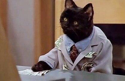 До сих пор хочу себе этого кота: