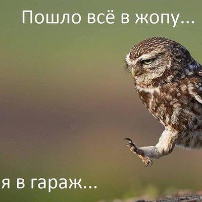 Александр Мишенин, 5 ноября 1991, Ижевск, id86668655