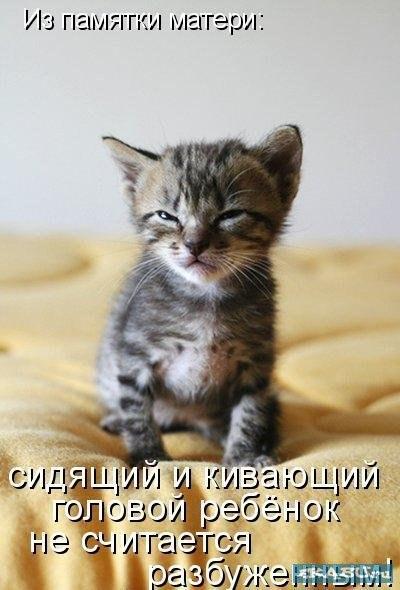 http://cs408429.vk.me/v408429342/78e3/Eq6nsORytoU.jpg