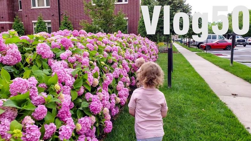 VLOG 50 детский сад в США!! Пришло время!! Цены в русском садике 🇱🇷 ЖИЗНЬ В АМЕРИКЕ 28.06.2018