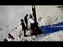 В Умані пошкодили розп'яття Ісуса Хреста