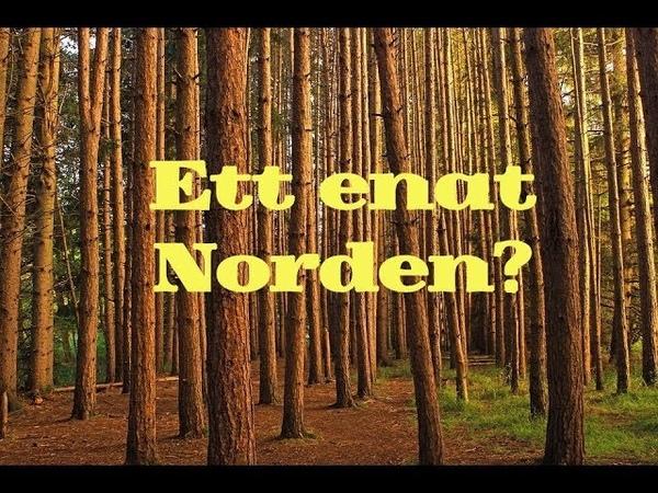 Varför vill Nordiska motståndsrörelsen ena Norden?