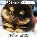 Инга Левченко фото #34