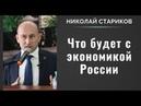 Николай Стариков что будет с экономикой России