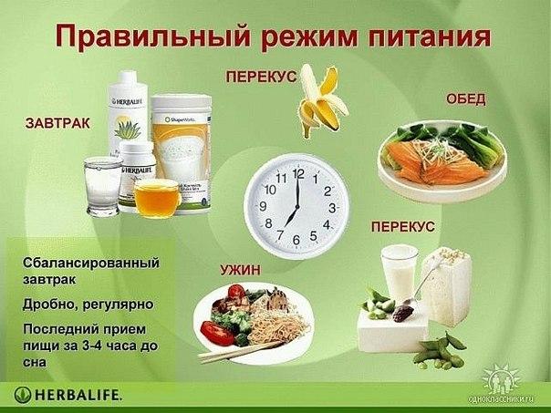 Правильное питание: какими должны быть порции? Как